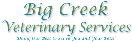 Big Creek Veterinary Services